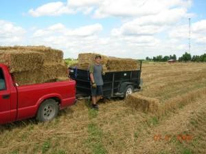 Daniel grabbing straw bales