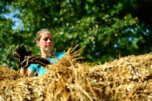 Liz stuffing between the bales