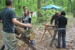 View the album Shiitake Mushroom Cultivation Workshop