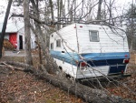 split-tree-camper.jpg